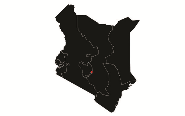 Kenyan Kinyari Estate