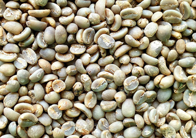 Indonesia Sumatran Green Beans